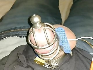 Chastity and TEND Unit forced cum